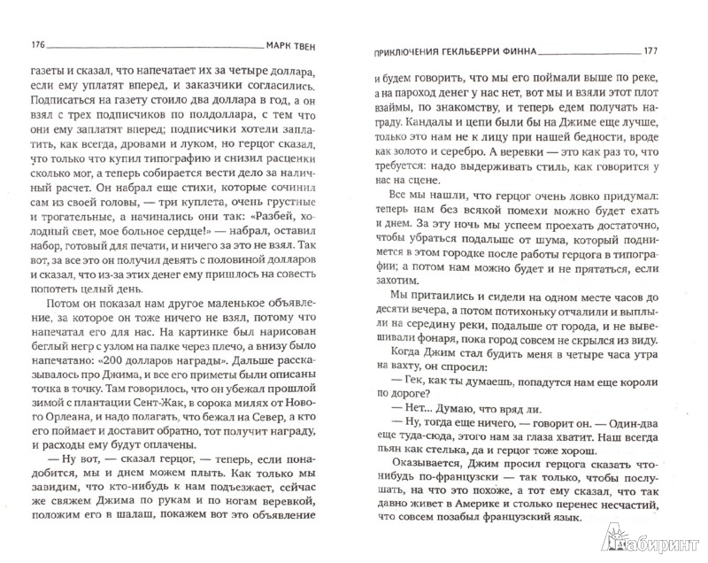 Иллюстрация 1 из 8 для Приключения Гекльберри Финна - Марк Твен | Лабиринт - книги. Источник: Лабиринт