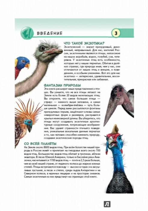 Иллюстрация 1 из 46 для Экзотические птицы. Яркое царство пернатых - Юлия Школьник   Лабиринт - книги. Источник: Лабиринт