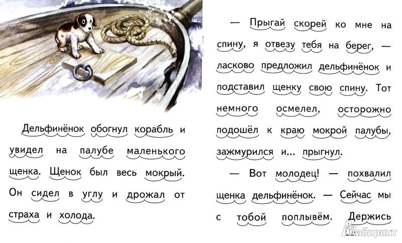 Иллюстрация 1 из 18 для Дельфинёнок и чайка - Елена Ермолова | Лабиринт - книги. Источник: Лабиринт
