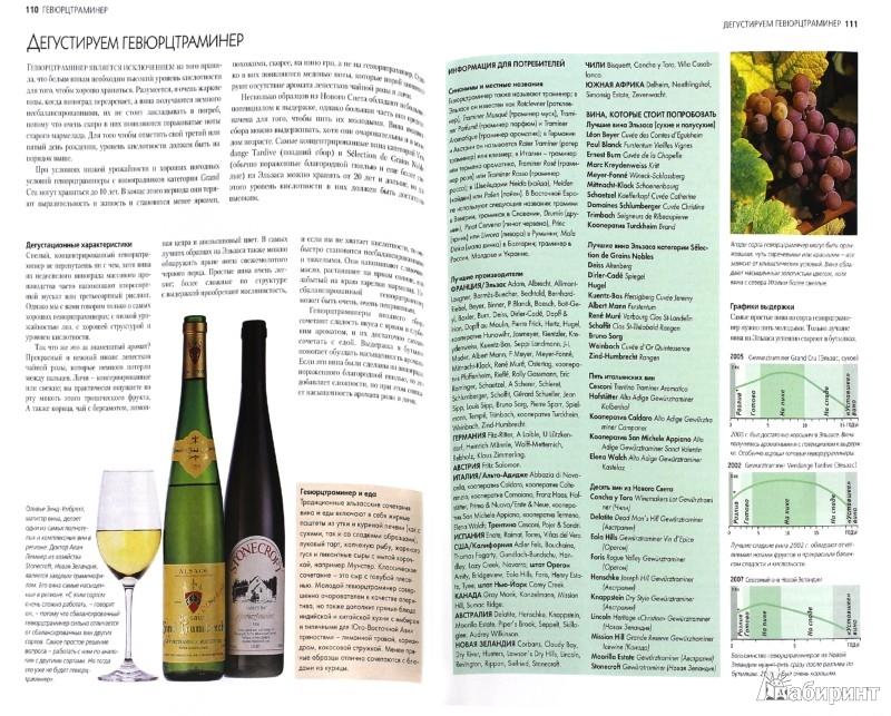 Иллюстрация 1 из 18 для Вино. Полное руководство по сортам винограда и стилям вин - Кларк, Ранд | Лабиринт - книги. Источник: Лабиринт