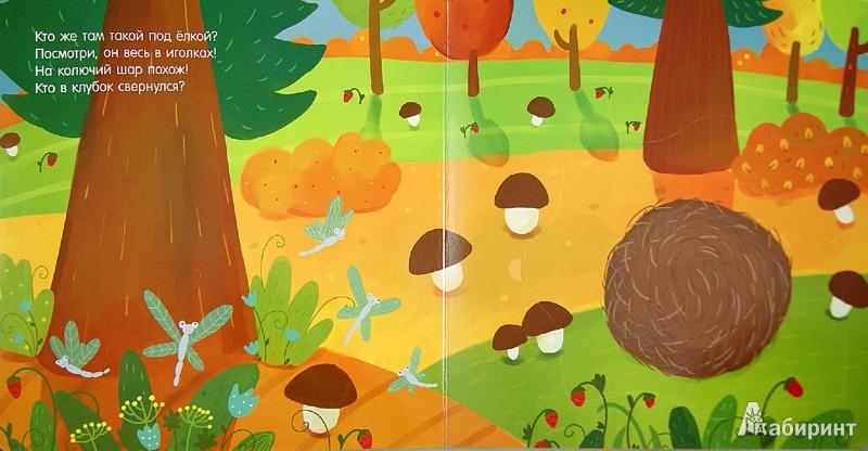 Иллюстрация 1 из 9 для Лесные истории. Загадки о животных. Книжка с клапанами - Анжела Берлова   Лабиринт - книги. Источник: Лабиринт