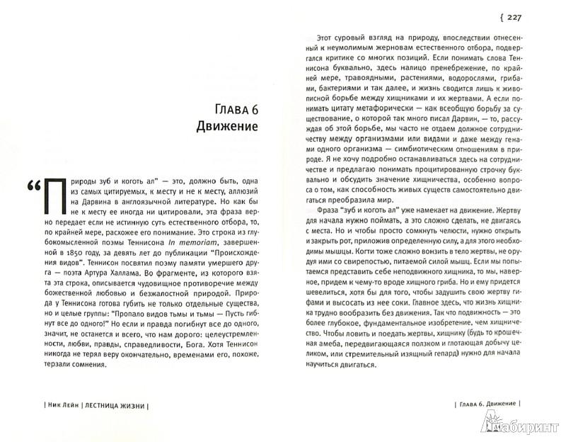 Иллюстрация 1 из 23 для Лестница жизни. Десять великих изобретений эволюции - Ник Лейн | Лабиринт - книги. Источник: Лабиринт