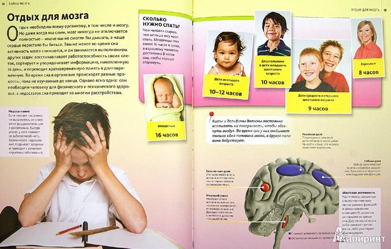 Иллюстрация 1 из 12 для Тайны мозга | Лабиринт - книги. Источник: Лабиринт