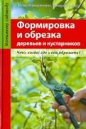 Хейнцельманн, Нубер: Формировка и обрезка деревьев и кустарников
