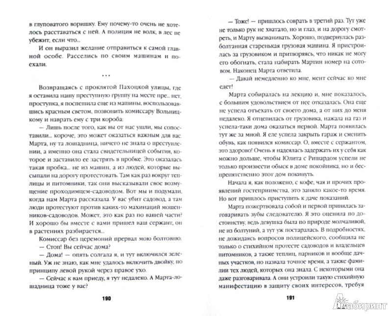 Иллюстрация 1 из 13 для Зажигалка - Иоанна Хмелевская | Лабиринт - книги. Источник: Лабиринт