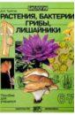 Биология: Растения, бактерии, грибы, лишайники: Пособие для учащихся 6-7 кл