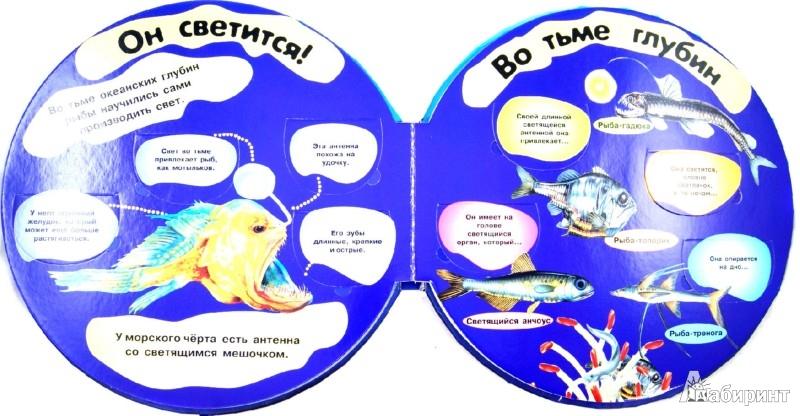 Иллюстрация 1 из 18 для Обитатели моря. Вопросы и ответы | Лабиринт - книги. Источник: Лабиринт