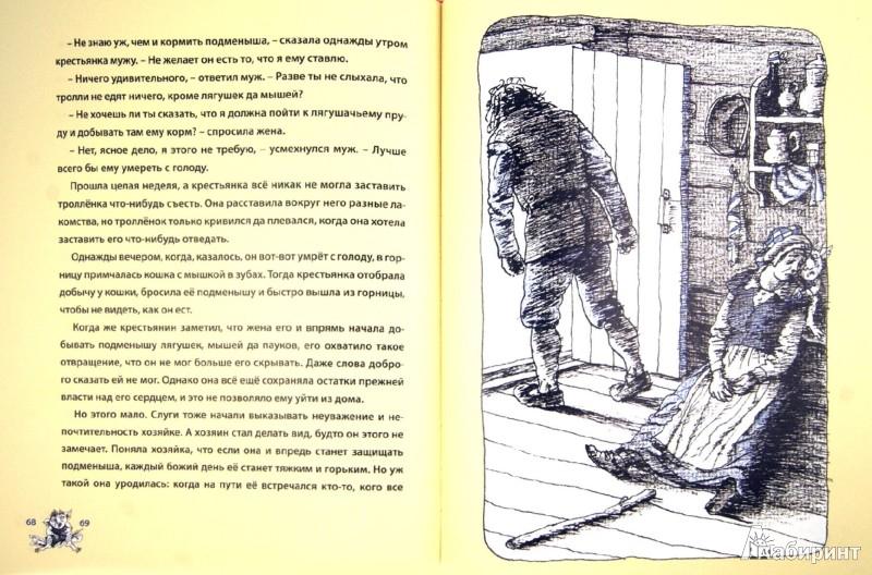 Иллюстрация 1 из 17 для Подарок Тролля   Лабиринт - книги. Источник: Лабиринт