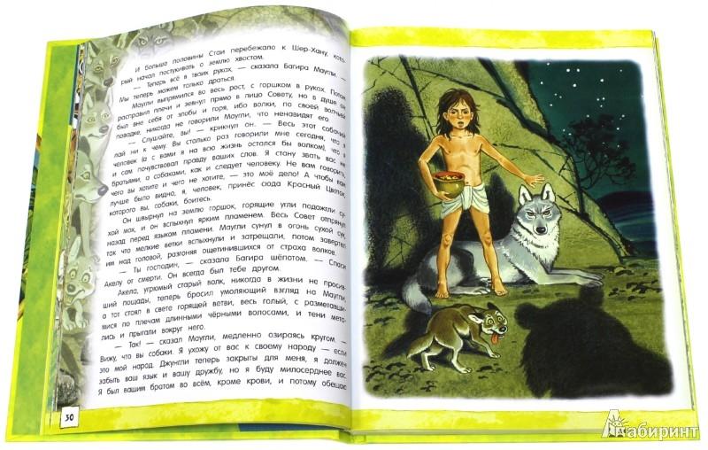 Иллюстрация 1 из 71 для Открой книгу! Маугли - Редьярд Киплинг | Лабиринт - книги. Источник: Лабиринт