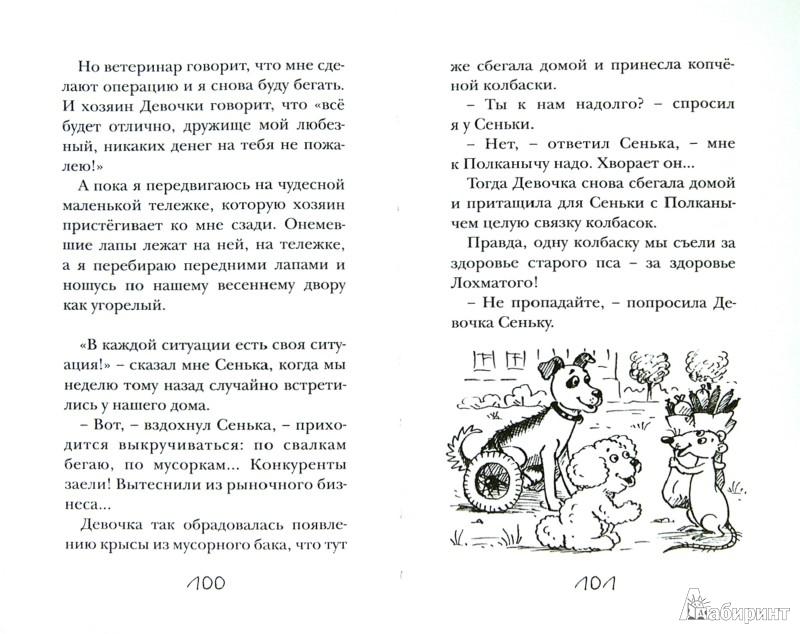 Иллюстрация 1 из 33 для Пончик идет по следу - Карен Арутюнянц | Лабиринт - книги. Источник: Лабиринт