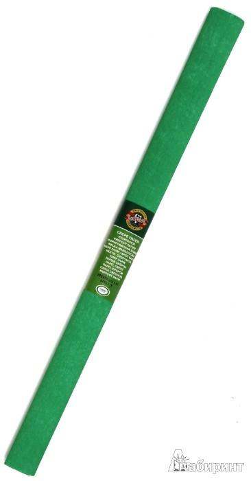 Иллюстрация 1 из 3 для Бумага гофрированная зеленая в рулоне (9755018001PM) | Лабиринт - игрушки. Источник: Лабиринт
