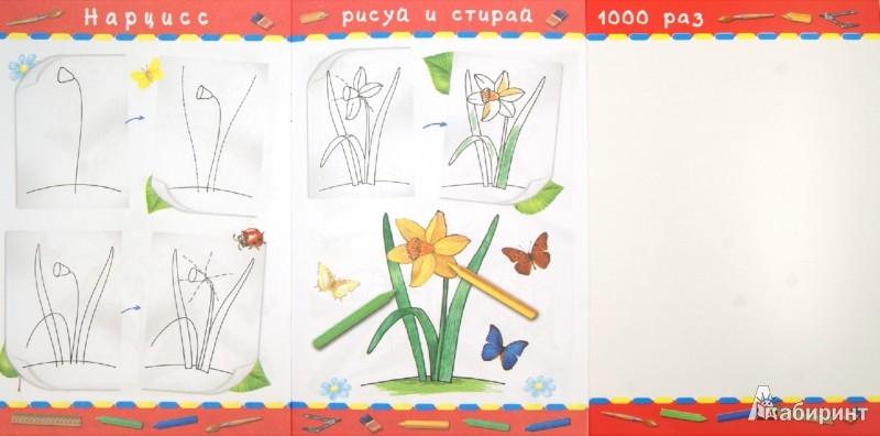 Иллюстрация 1 из 8 для Учимся рисовать. Растения | Лабиринт - книги. Источник: Лабиринт