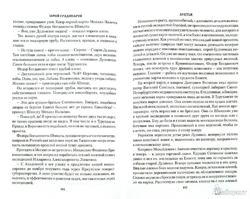 Иллюстрация 1 из 9 для Братья - Юрий Градинаров | Лабиринт - книги. Источник: Лабиринт