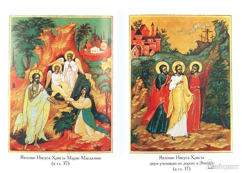 Иллюстрация 1 из 16 для Закон Божий для новоначальных   Лабиринт - книги. Источник: Лабиринт