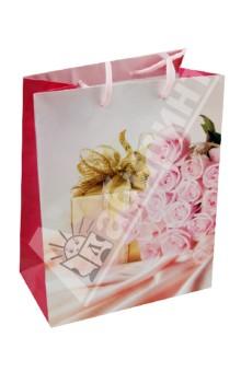 Пакет бумажный для сувенирной продукции 17,8x22,9x9,8 (32529)
