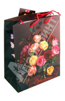 Пакет бумажный для сувенирной продукции 17,8x22,9x9,8 (32814)