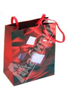 Пакет бумажный для сувенирной продукции 11,1x13.7x6.2 (32565)
