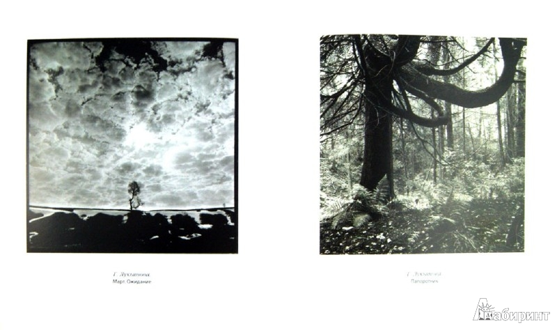 Иллюстрация 1 из 22 для Ген художника в фотографической реальности. Эссе художественной фотографии - Наль Подольский | Лабиринт - книги. Источник: Лабиринт