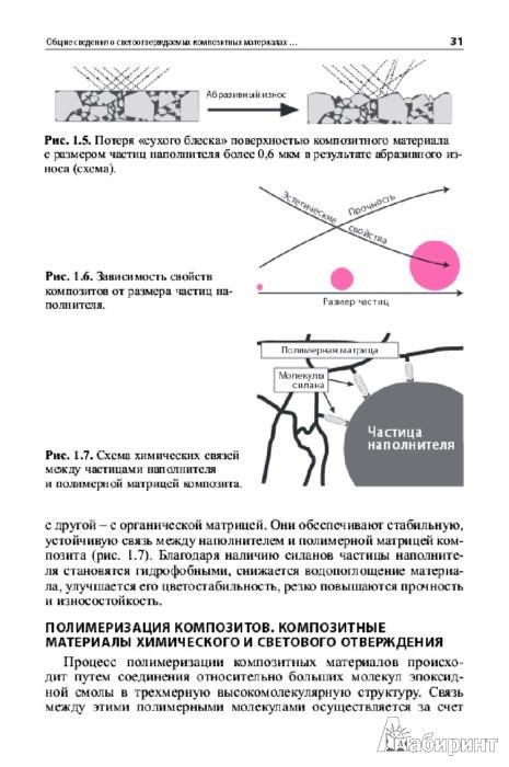 Иллюстрация 1 из 2 для Восстановление зубов светоотверждаемыми композитными материалами. Практическое руководство - Макеева, Николаев | Лабиринт - книги. Источник: Лабиринт