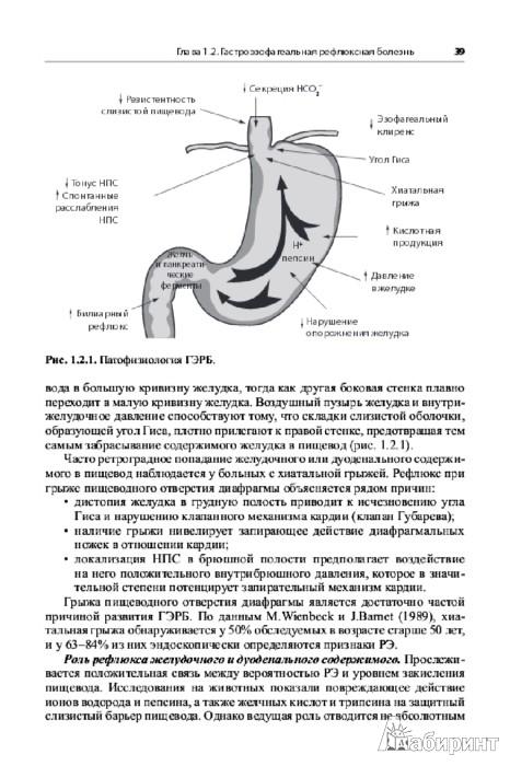 Иллюстрация 1 из 2 для Гастроэнтерология и гепатология. Диагностика и лечение. Руководство для врачей - Хазанов, Калинин, Логинов, Бакулин | Лабиринт - книги. Источник: Лабиринт