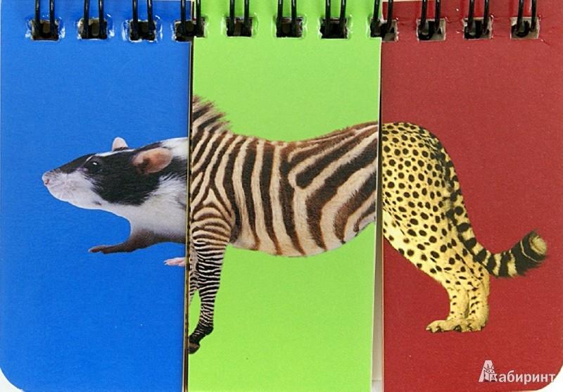 Иллюстрация 1 из 12 для Животные. Собери картинку   Лабиринт - книги. Источник: Лабиринт