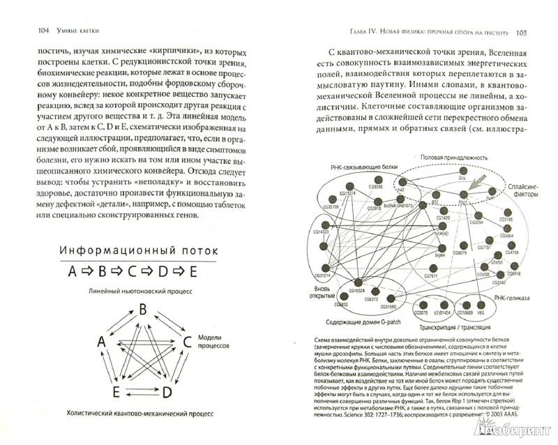 Иллюстрация 1 из 4 для Умные клетки: Биология убеждений. Как мышление влияет на гены, клетки и ДНК - Брюс Липтон | Лабиринт - книги. Источник: Лабиринт