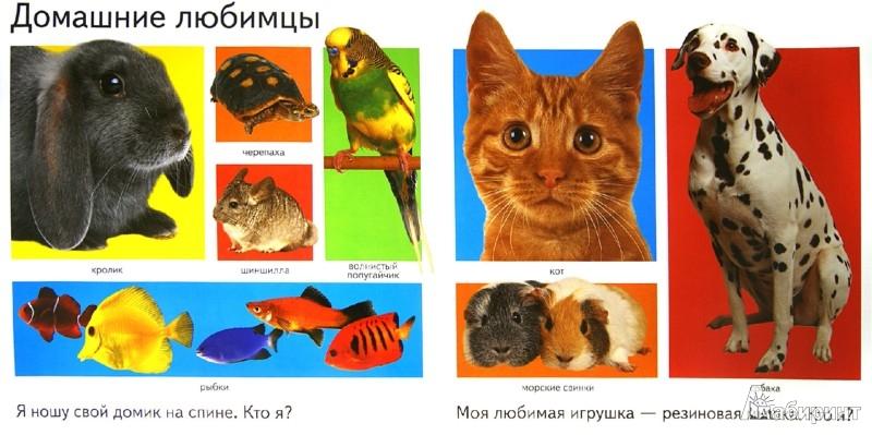 Иллюстрация 1 из 11 для Первая книга: Животные | Лабиринт - книги. Источник: Лабиринт
