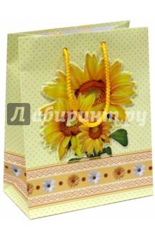 Пакет подарочный ламинированный (M-3D-022)