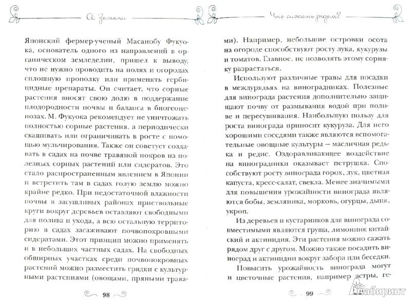 Иллюстрация 1 из 5 для Чудо-урожай без химикатов - Ангелина Зимина | Лабиринт - книги. Источник: Лабиринт