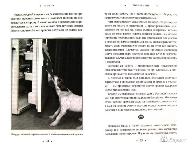 Иллюстрация 1 из 10 для Угги. Моя жизнь - Венди Холден | Лабиринт - книги. Источник: Лабиринт