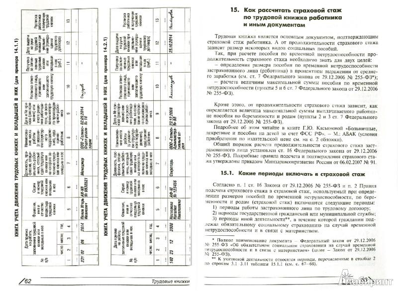 Иллюстрация 1 из 10 для Трудовые книжки: примеры всех записей   Лабиринт - книги. Источник: Лабиринт