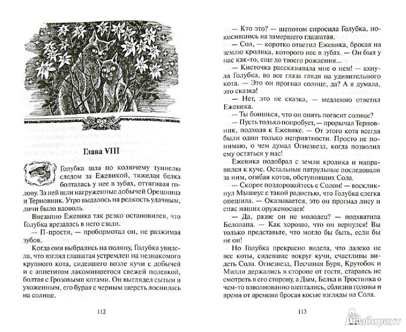 Иллюстрация 1 из 24 для Забытый воин - Эрин Хантер   Лабиринт - книги. Источник: Лабиринт