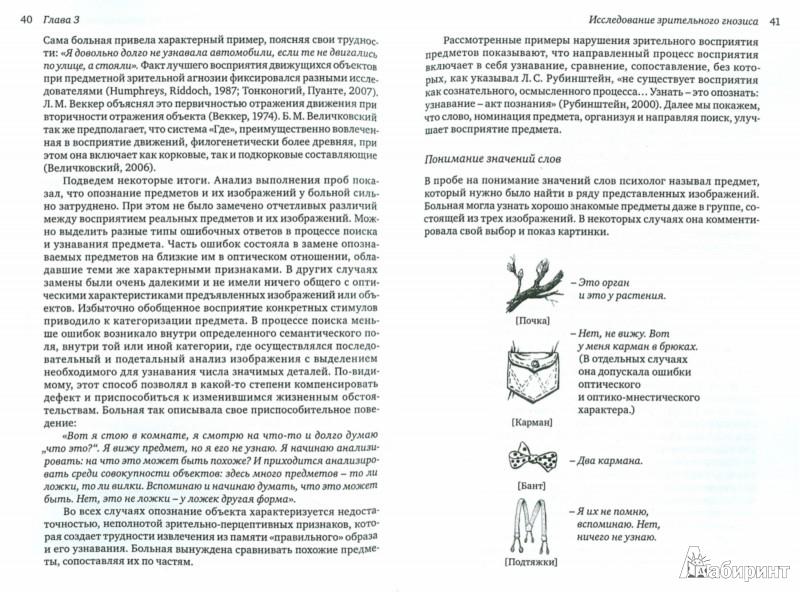 Иллюстрация 1 из 10 для Жизнь на осколках видимого мира. Нейропсихологическая диагностика зрительной агнозии - Наталия Полонская | Лабиринт - книги. Источник: Лабиринт