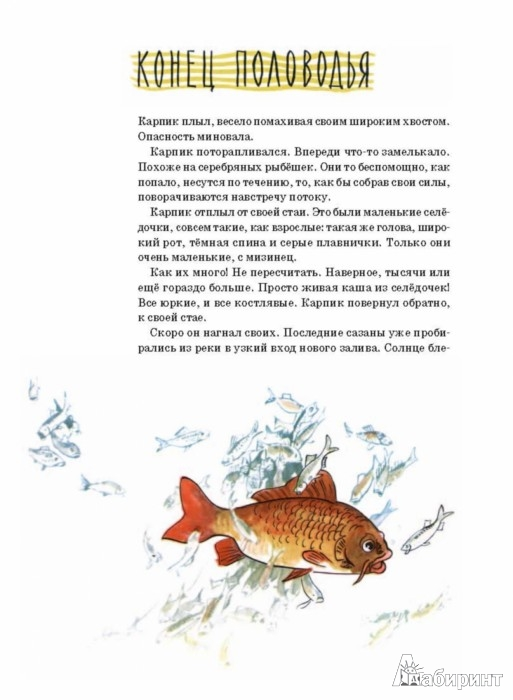Иллюстрация 1 из 65 для Приключения Карпика - Андрей Клыков | Лабиринт - книги. Источник: Лабиринт
