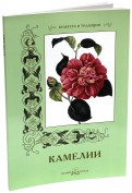 С. Иванов: Камелии