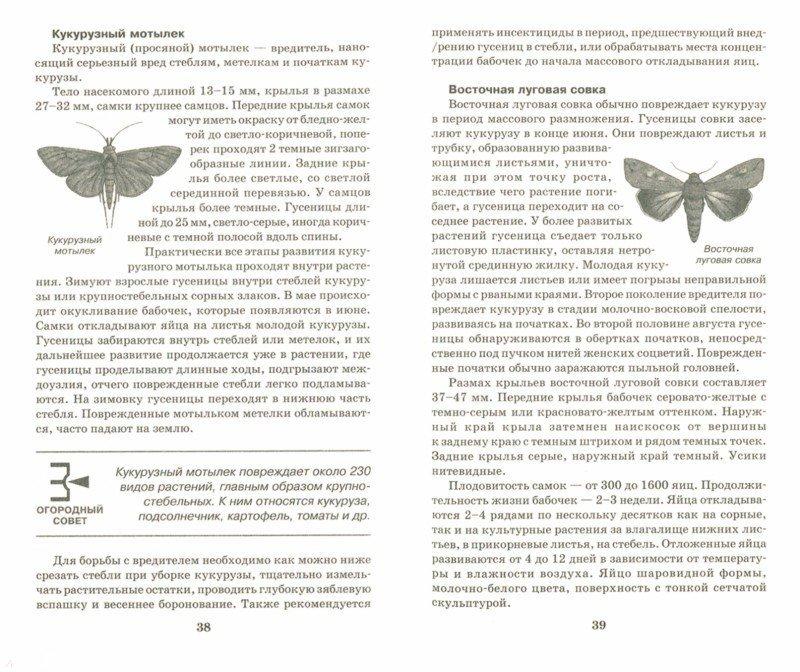 Иллюстрация 1 из 5 для Чистый урожай без болезней, вредителей и лишних хлопот - Надежда Севостьянова | Лабиринт - книги. Источник: Лабиринт