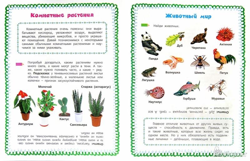 Иллюстрация 1 из 18 для Мир вокруг нас: Природа - Нефедова, Узорова | Лабиринт - книги. Источник: Лабиринт