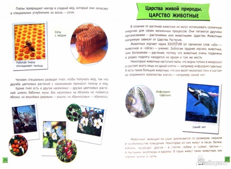 Иллюстрация 1 из 11 для Биология от шести и старше - Ольга Таглина | Лабиринт - книги. Источник: Лабиринт