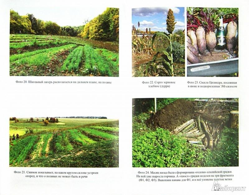 Иллюстрация 1 из 8 для Огород для умных, или Как не навредить заботой - Борис Бублик   Лабиринт - книги. Источник: Лабиринт