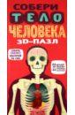 Настольная игра Собери тело человека. 3D-пазл (66 элементов)