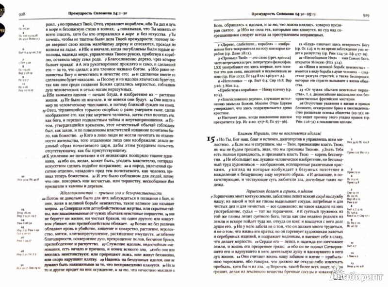 Иллюстрация 1 из 4 для Библия. Книги Священного Писания Ветхого и Нового Завета. В Синодальном переводе с комментариями   Лабиринт - книги. Источник: Лабиринт