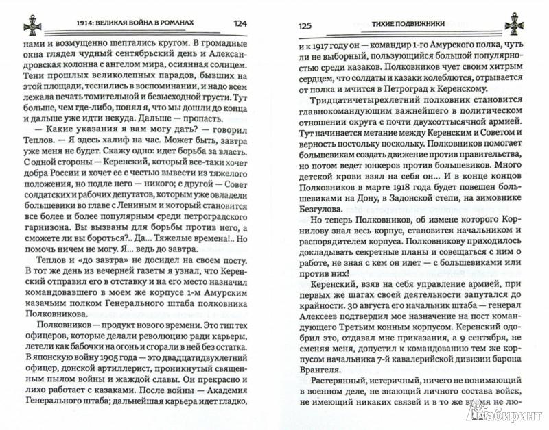 Иллюстрация 1 из 2 для Тихие подвижники. Стратегическая ошибка - Краснов, Лавренев | Лабиринт - книги. Источник: Лабиринт