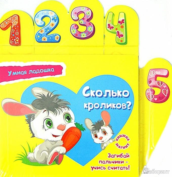 Иллюстрация 1 из 14 для Сколько кроликов? - Юлия Юга   Лабиринт - книги. Источник: Лабиринт
