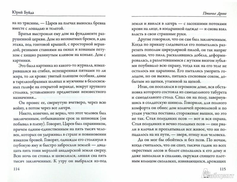 Иллюстрация 1 из 11 для Послание госпоже моей левой руке - Юрий Буйда | Лабиринт - книги. Источник: Лабиринт