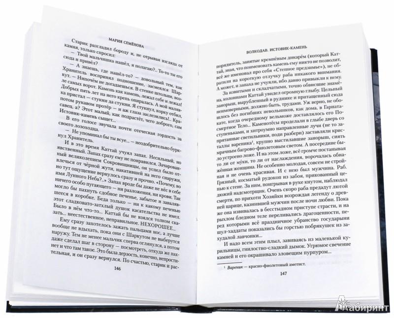Иллюстрация 1 из 20 для Волкодав. Истовик-камень - Мария Семенова   Лабиринт - книги. Источник: Лабиринт