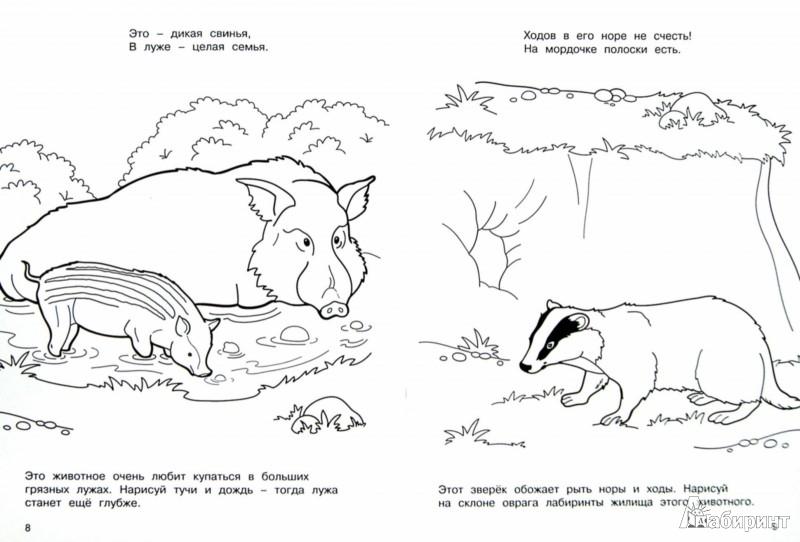 Иллюстрация 1 из 8 для Лесные жители - М. Земнов | Лабиринт - книги. Источник: Лабиринт