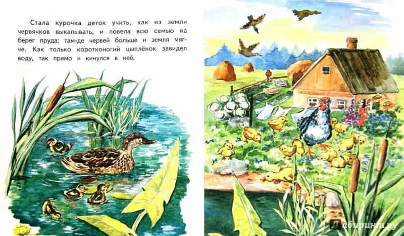 Иллюстрация 1 из 22 для Чужое яичко - Константин Ушинский   Лабиринт - книги. Источник: Лабиринт