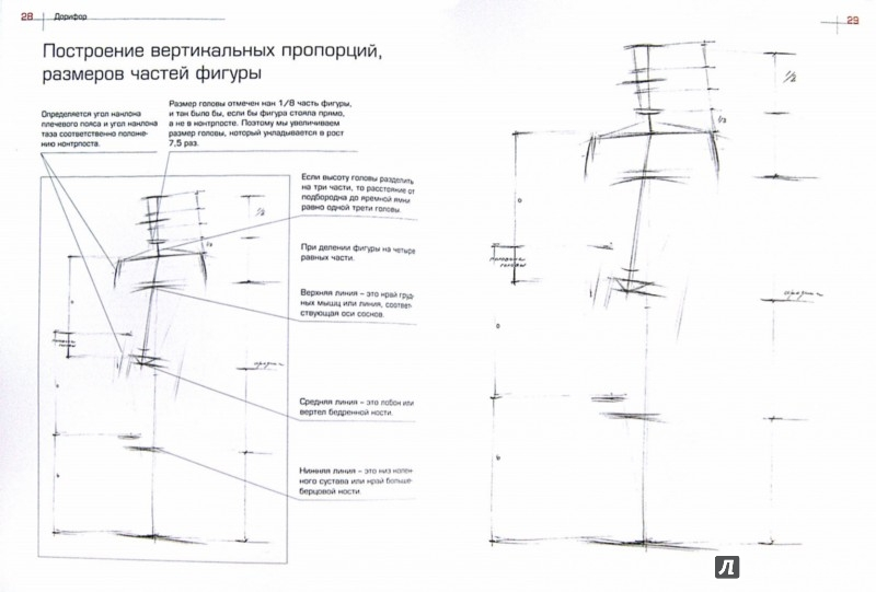 Иллюстрация 1 из 6 для Как рисовать фигуру человека. Пособие для поступающих в художественные вузы - Александр Рыжкин | Лабиринт - книги. Источник: Лабиринт