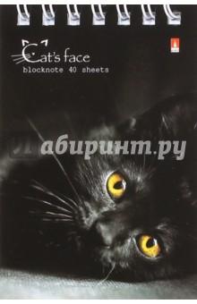 """Блокнот А7 """"Кошачий взгляд"""", в ассортименте (3-40-007 Д)"""
