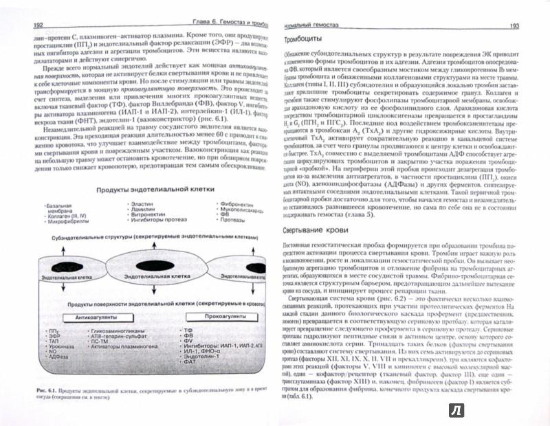 Иллюстрация 1 из 10 для Патофизиология крови: монография - Фред Шиффман | Лабиринт - книги. Источник: Лабиринт